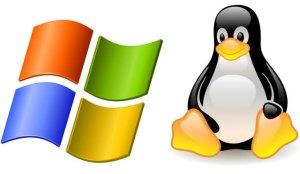 Windows y Linux